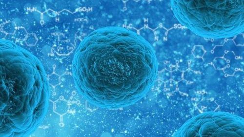 提升身體抗病能力?水與細胞之謎