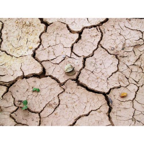 美國水危機,為何禁售純淨水?